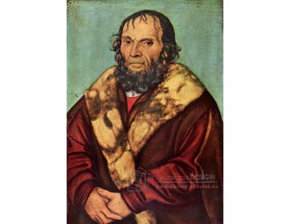 VlCR-49 Lucas Cranach - Portrét Johannese Schonera