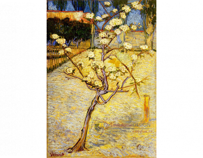 R2-50 Vincent van Gogh - Malá květoucí hrušeň
