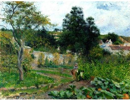 VCP-418 Camille Pissarro - Zeleninová zahrada u Hermitage