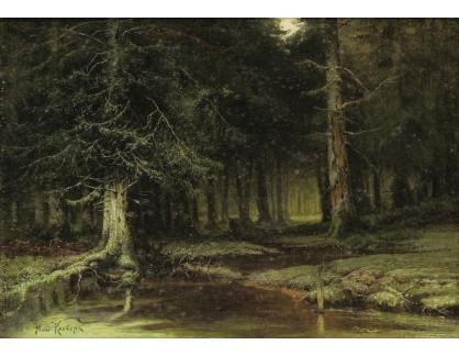 VR-438 Julius Klever - Pohled do lesa za úsvitu