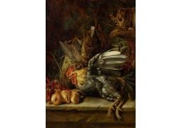 DDSO-4375 Cristoffel Puytlinck - Zátiší s ptáky a kočkou