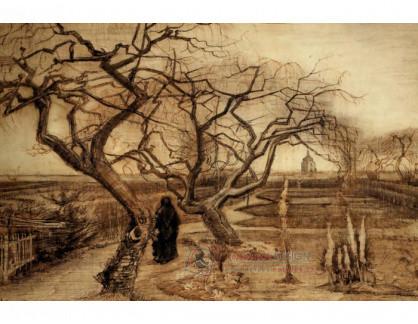 R2-1665 Vincent van Gogh - Zahrada v zimě