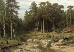 VR-314 Ivan Ivanovič Šiškin - Borový les v gubernii Vjatka