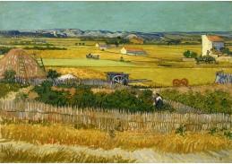 A-17 Vincent van Gogh - Sklizeň v La Crau