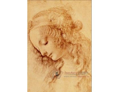 VR1-16 Leonardo da Vinci - Studie ženské hlavy z profilu