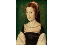 DDSO-2582 Corneille de Lyon - Portrét madame de Chateaubriand