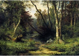 VR-324 Ivan Ivanovič Šiškin - Lesní krajina s volavkami