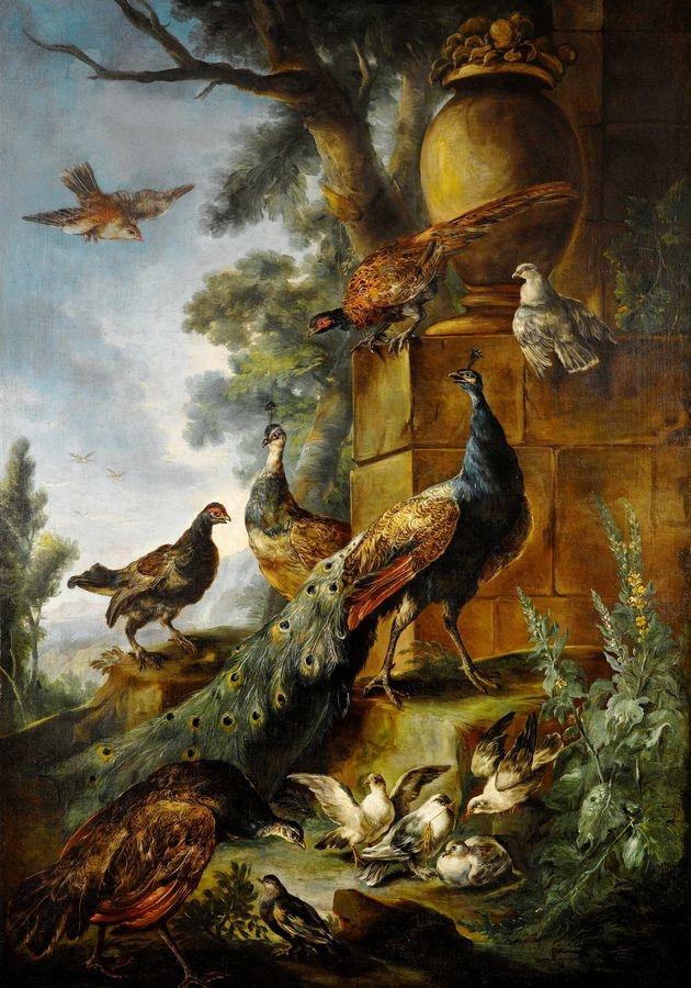 Slavné obrazy I-DDSO-158 Giovanni Crivelli - Pávi a jiní ptáci v krajině