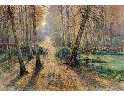 VCM 754 Václav Radimský - Cesta lesem