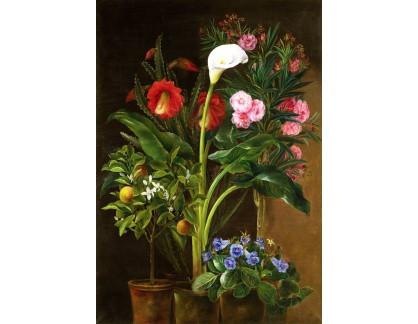 Krásné obrazy II-339 Louise Garlieb - Zátiši s květinami