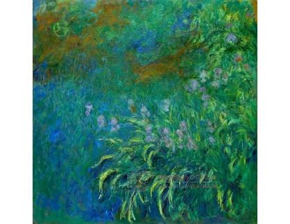R8-183 Claude Monet - Kosatce