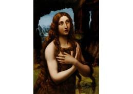 DDSO-2878 Leonardo da Vinci - Kajícná Magdaléna