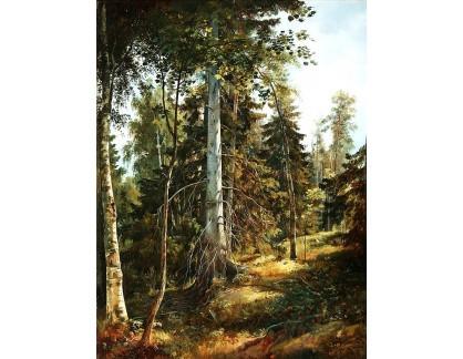 D-6415 Ivan Ivanovič Šiškin - Lesní krajina