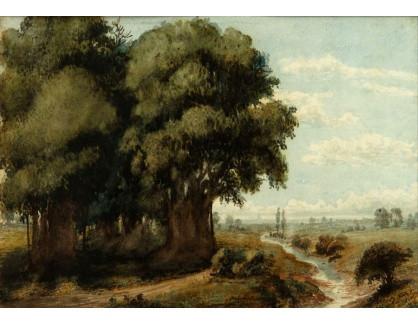 Slavné obrazy XIV-39 Prilidiano Pueyrredon - Caprocho