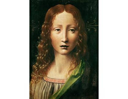 VR1-29 Leonardo da Vinci - Hlava dvanáctiletého Krista