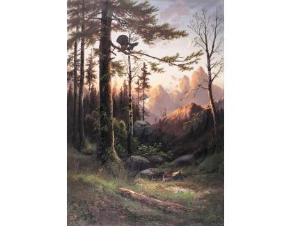 Krásné obrazy II-284 Julius Zopf - Západ slunce nad horami s tetřevem