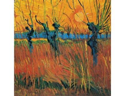 VR2-262 Vincent van Gogh - Vrby při západu slunce