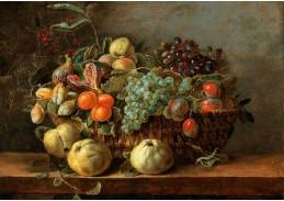 DDSO-4478 Adriaen van Utrecht - Zátiší s ovocem