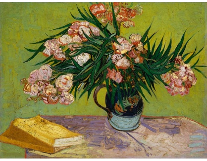 VR2-248 Vincent van Gogh - Váza s oleandry a knihami