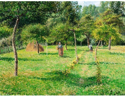 VCP-415 Camille Pissarro - Zahrada v Eragny