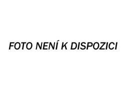 R10-12 Paul Cézanne - Odpoledne v Neapoli s černým sluhou