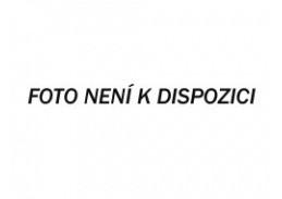 R17-19 Sandro Botticelli - Korunovace Matky Boží