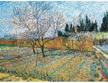 VR2-68 Vincent van Gogh - Kvetoucí ovocný sad s broskvoněmi