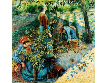 VCP-385 Camille Pissarro - Sběr jablek