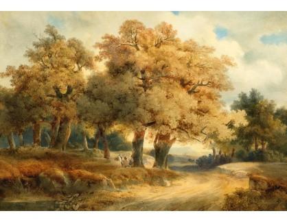 Slavné obrazy II-DDSO-418 Alexandre Calame - Krajina se stromy a cestou