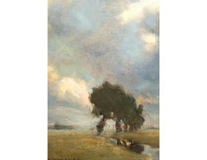 XV-309 Carl Maria Thuma - Stromy v krajině