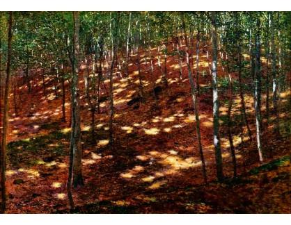 VCM 180 Antonín Slavíček - Slunce v lese