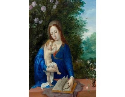 DDSO-204 Jan Brueghel - Madonna a dítě v krajině