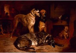 VSO 668 John Charlton - Odpočívající psi