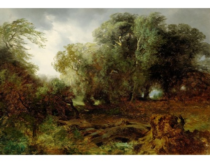 Slavné obrazy II-DDSO-422 Alexandre Calame - Stromy v bouřlivém počasí