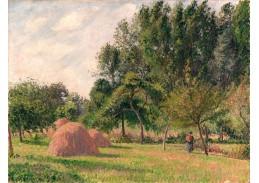 DDSO-2249 Camille Pissarro - Ráno v Haystacks