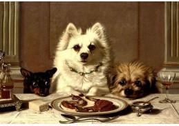 Slavné obrazy VI-125 Neznámý autor - Čekání na jídlo