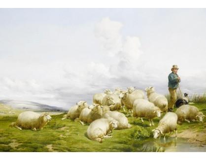 VANG276 Thomas Sidney Cooper - Pastýř s ovcemi