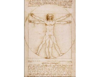R1-3 Leonardo da Vinci - Proporce lidské postavy