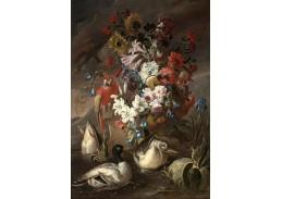 XV-112 Andrea Belvedere - Zátiší s papouškem a kachnami