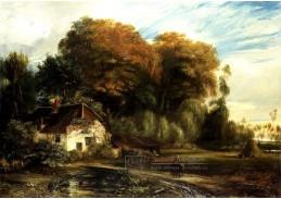 D-7560 Peter Paul Rubens - Zajetí Samsona