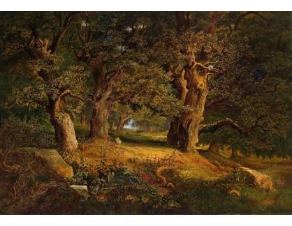VCM 145 Alois Kirnig - Lesní krajina