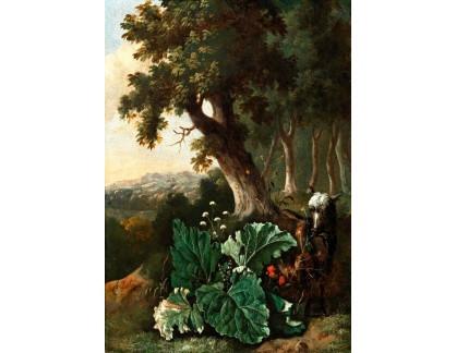 Slavné obrazy I-DDSO-2 Abraham Begeyn - Zalesněná krajina s ovcí a bodláčím