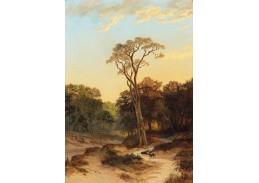Krásné obrazy II-71 Jan Henrik Breyer - Lesní krajina s povozem na cestě
