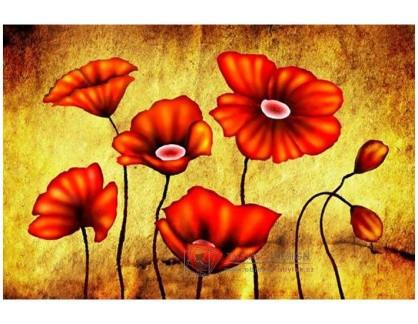 Obraz květiny 4753