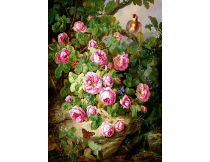 Krásné obrazy II-237 Josef Lauer - Zátiší s růžemi, motýlem a ptákem