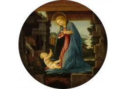 D-8307 Sandro Botticelli - Madonna zbožňující dítě