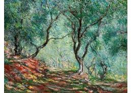 DDSO-2252 Claude Monet - Olivovníky v zahradě