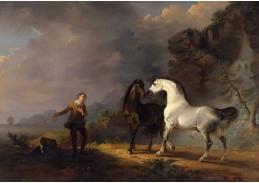 Slavné obrazy XIV-100 Sawrey Gilpin - Gulliverová dobrodružství