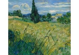 D-6174 Vincent van Gogh - Zelené obilí