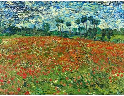 VR2-125 Vincent van Gogh - Maková pole